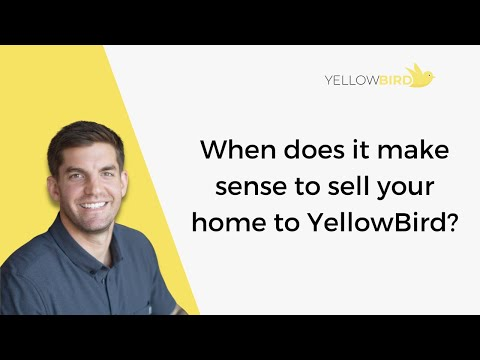Why Might YellowBird Be Your Best Option?