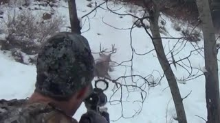Mule-Deer Shot On the Run!!! MUST SEE - Stuck N the Rut 24