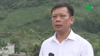 Lào Cai: Hàng nghìn khối đất đá đe dọa trường học | VTC14