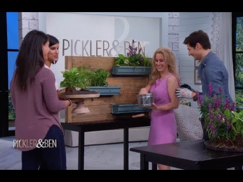How To Make A DIY Live Wall with the Listed Sisters - Pickler & Ben