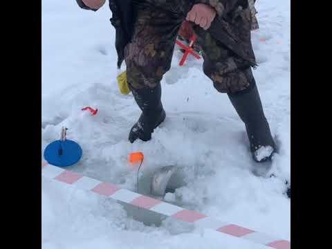 Зимняя рыбалка ногинский район