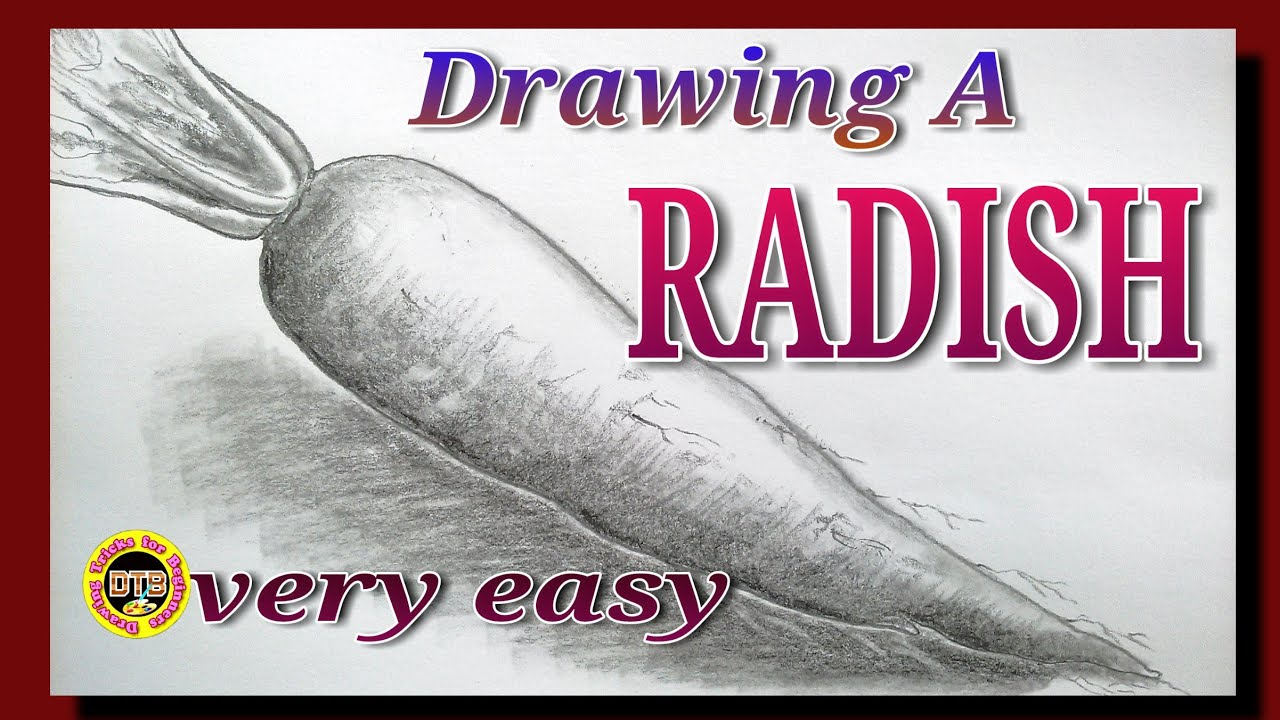 10 09 MB] How to draw a#Radish, muli, Download Mp3/Mp4 #4219   YTVIMUSIC