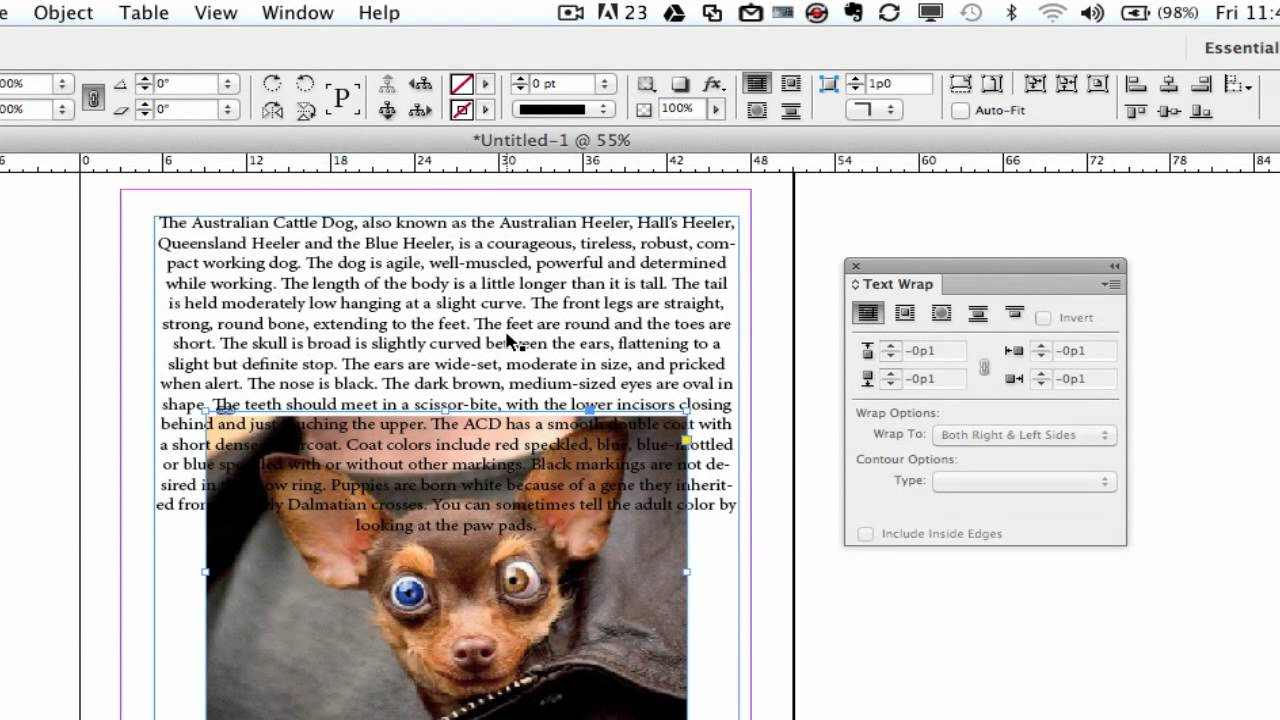 Indesign cs6 tutorial how to wrap text around a graphic youtube publicscrutiny Choice Image