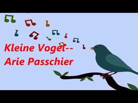 Kleine Vogel --  Arie Passchier
