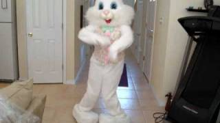 """you can't touch this"" dancing easter bunny"