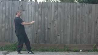 Houston Backyard Wing Tsun - Chum Kiu (with Additional Punches And Kicks)