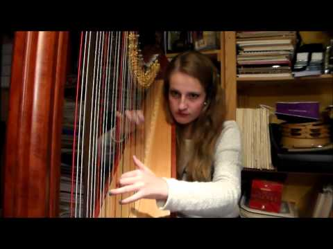 5SOS - She Looks So Perfect (Harp Cover)