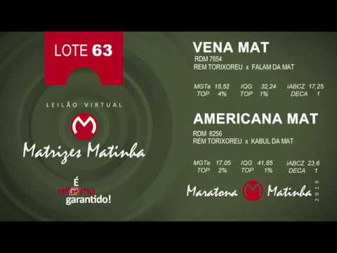 LOTE 63 Matrizes Matinha 2019