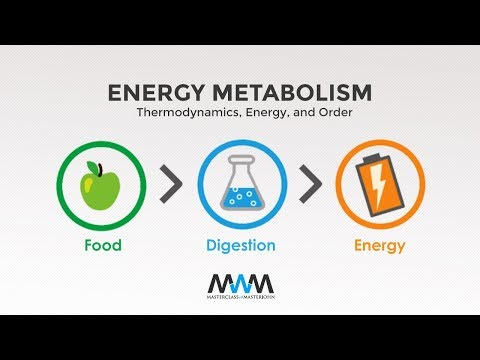MWM 2.1: Thermodynamics, Energy, and Order