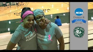 DIII Week Feature: The Davis Family - Champions in Their Own Right