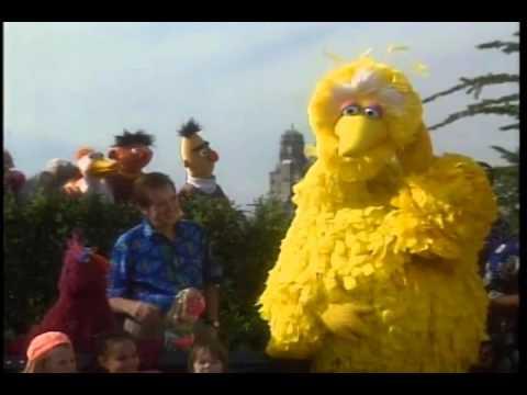 Sesame Street - 25th Birthday A Musical Celebration DVD Preview