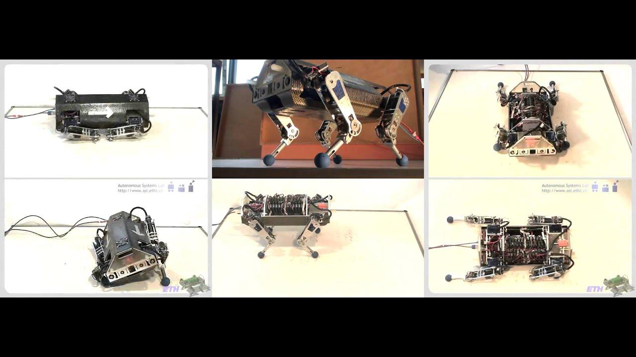 How to Design a 4 LEGGED ROBOT - 81005 - Robotpark ACADEMY