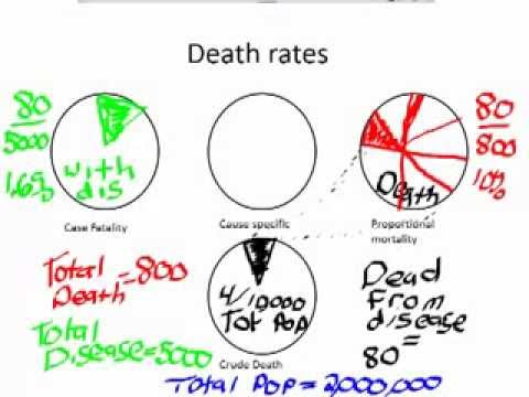 Epidemiology: Calculating Death Rates