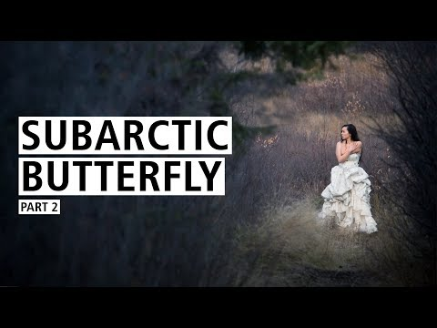 Coal Photography: Subarctic Butterfly, Part II