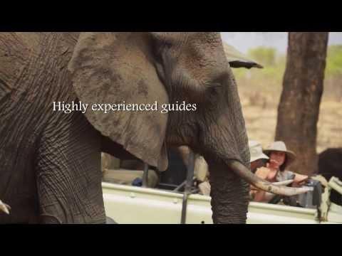 The Hide, Hwange National Park, Zimbabwe 2014