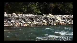 台灣犬渡溪爬樹Formosan mountain dog crossing a river and walk a dif...