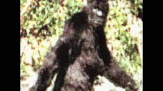 1 of 82 Patterson Gimlin Bigfoot best clips film(2009) thumbnail