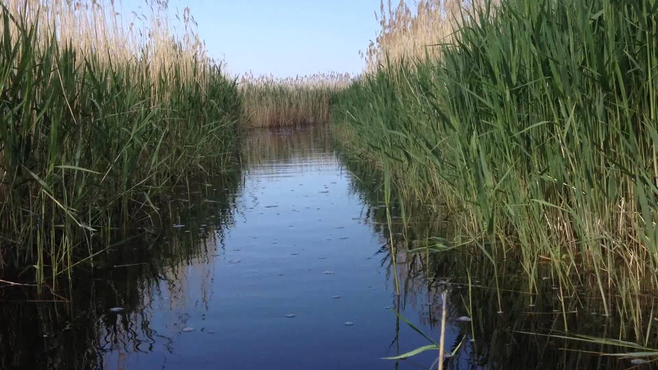рыбалка в омской области озеро тенис омская область