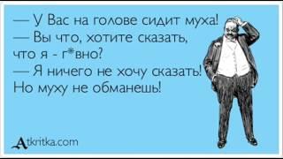 Коллектор не смог обмануть Петровича