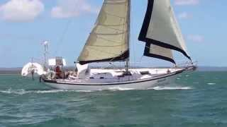 Tradewinds 35 Cutter sailing on Moreton Bay