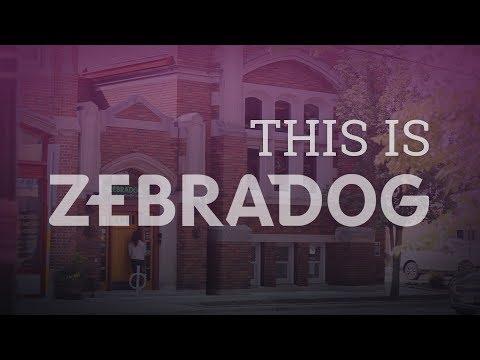 This Is ZEBRADOG