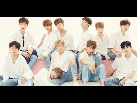YMC Entertainment to manage Wanna One until they disband at the end of 2018