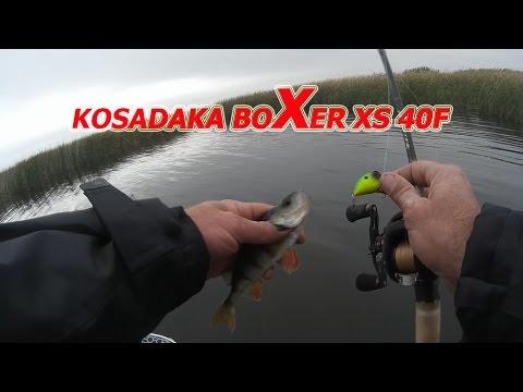 Kosadaka Boxer XS 40F. Обзор. Первые Впечатления От Ловли.
