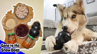 Thanksgiving Dinner Stuffed in a Kong for Dogs | DIY Dog Treats 110