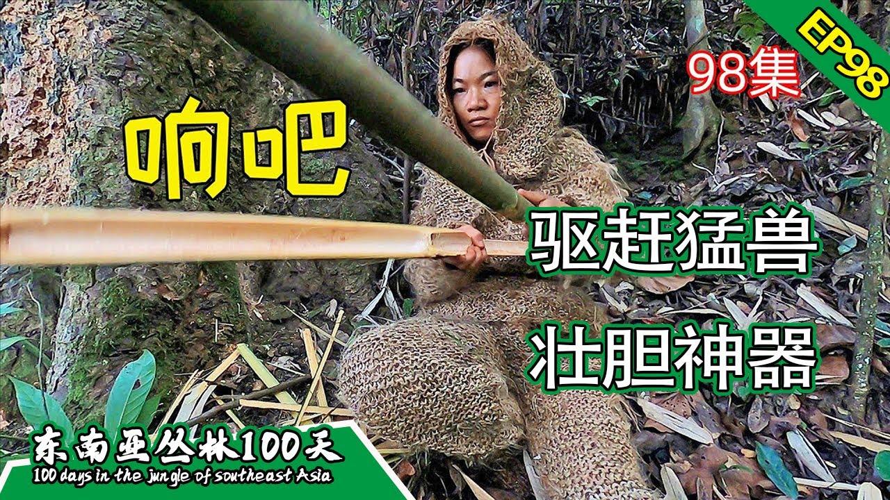 Download EP98 驱赶猛兽,信号求救,壮胆神器丨挑战丛林生存100天 DAY70