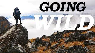 GOING WILD | An Adventure In The Wilderness