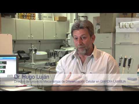 El Dr. Hugo Luján y su investigación