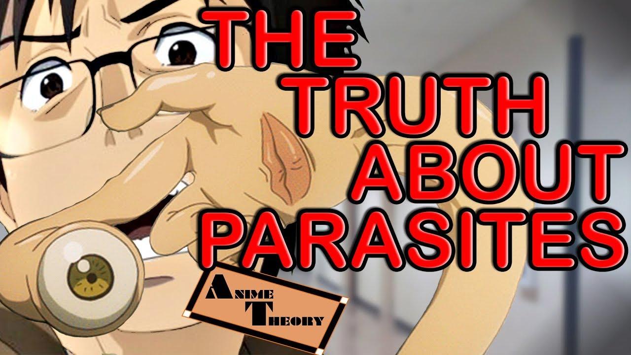 Animehost parazita karóra