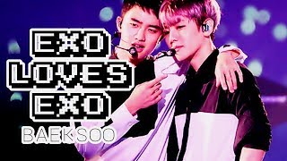 Download Video Exo loves Exo: BaekSoo MP3 3GP MP4