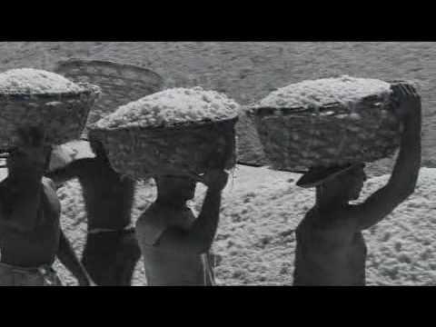 Araya (film) ARAYA YouTube