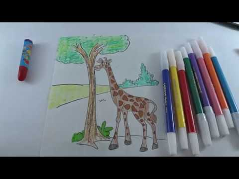 How To Paint Giraffe Colours For Kids Mewarnai Jerapah Anak Anak