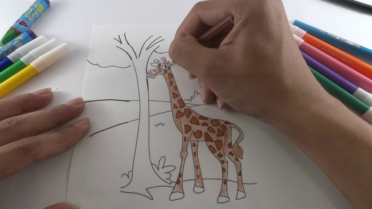 How To Paint Giraffe Colours For Kids Mewarnai Jerapah Anak