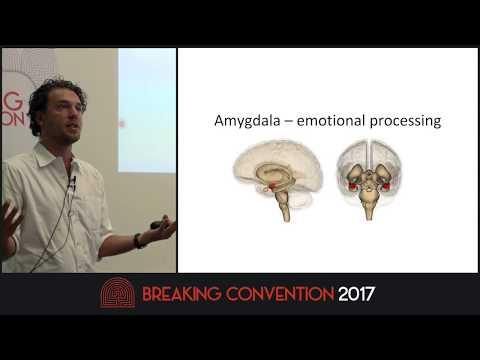 Leor Roseman - Amygdala Reactivity & Symptom Improvement After Psilocybin Treatment For Depression