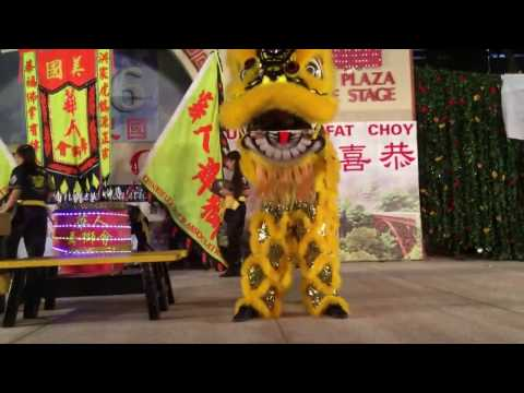 Chinese Lion Dance Association (CLDA) - 2017 Chinese New Year Opening Night