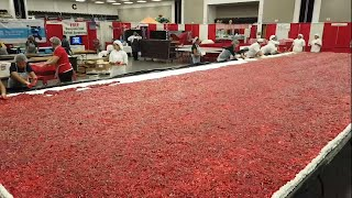 How the World's Largest Strawberry Shortcake is made