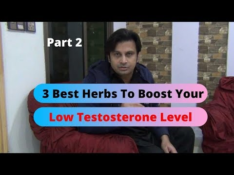 Three Best Herbs To Boost Testosterone Level Naturally By Fitness With Arshad