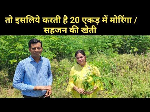 क्यों करती है ये महिला 20 एकड़ में मोरिंगा की खेती Moringa farming in India