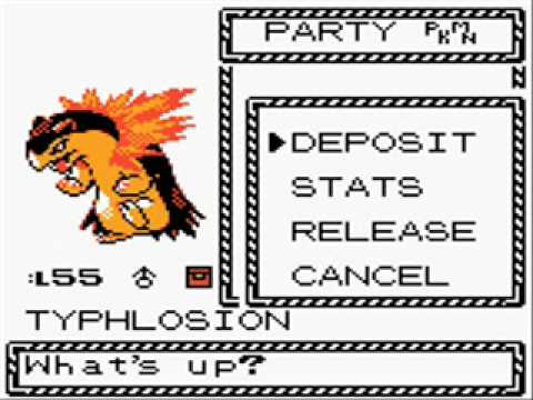 Pokemon Gold & Silver - Duplicate