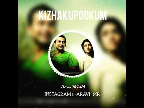Anwar KizhakuPookum Love BGM Whatsapp Status Video