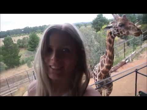 AMAZING BIRTHDAY TRIP!! wildlife lodge (canberra)
