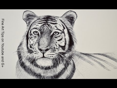 Free Drawing Tutorials: Learn to Draw With Fine Art-Tips