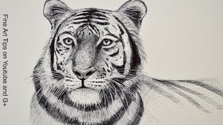 Baixar Free Drawing Tutorials: Learn to Draw With Fine Art-Tips