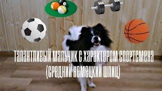 талантливый мальчик с характером спортсмена
