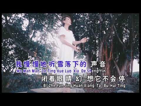雪落下的聲音(MV)陈丽媚