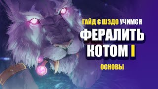 ФЕРАЛ КОТ ДПС ГАЙД | Учимся быть КОТОМ с Шэдо | Эпизод I: Основы. | World of Warcraft: Classic