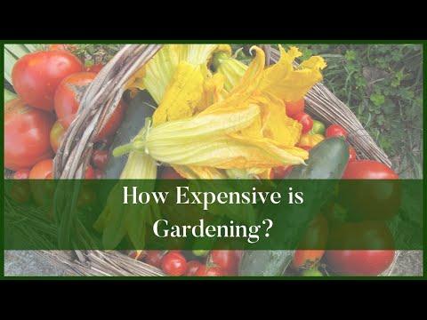How Expensive is Gardening? Gardening on a Budget Budget Garden Ideas